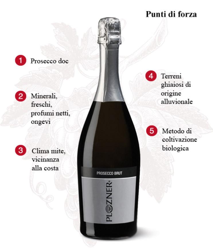 vino plozner